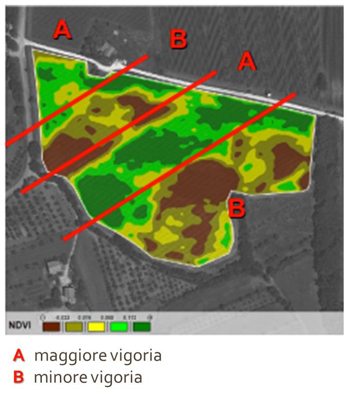 mappa-di-vigoria